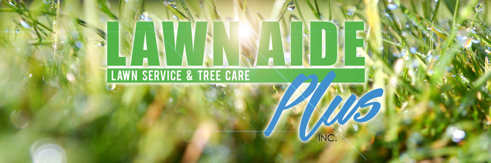 LAWN AIDE PLUS | LAWN CARE AND TREE CARE SPECIALISTS